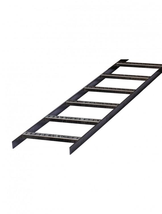 Marine Ladder 1